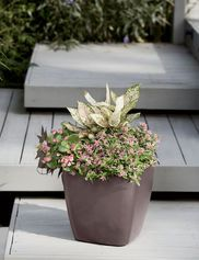 Lechuza Cascadino Stackable Herb Planter | Herb Planters, Planters And Herbs