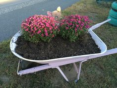 Antiques on - wheelbarrow painted in Henrietta Chalk Paint(R) by Annie Sloan. Oh deer! Who's binding behind the mums? Oh Deer, Wheelbarrow, Annie Sloan, Chalk Paint, Four Square, Garden Tools, Antiques, Painting, Antiquities