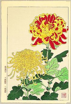 Chrysanthemums by Shodo Kawarazaki 1889-1973  Love the colors in this.  Would make a beautiful tattoo