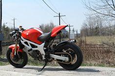 winter project idea: ducati monster seat on my sv650? ducati monster, fiets  accessoires