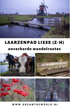 Photography Storytelling, Hiking Routes, The Great Outdoors, Netherlands, Holland, Amsterdam, Street Art, To Go, Around The Worlds