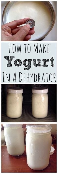 Homemade yogurt is super easy to make in a dehydrator! You only need 1 tablespoon of plain yogurt and 1 quart of milk to make your first batch. Then you can keep it going for weeks. Much cheaper and healthier than store bought and the taste is incredible! Homemade Yogurt, Homemade Cheese, Real Food Recipes, Healthy Recipes, Locarb Recipes, Bariatric Recipes, Yogurt Recipes, Quick Recipes, Diabetic Recipes