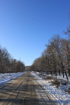 Winter Forest Road - Public Domain Photos, Free Images for Commercial Use