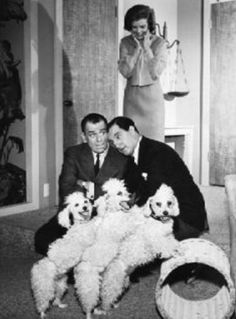 Poodles and their Famous People - Page 8 - Poodle Forum - Standard Poodle, Toy Poodle, Miniature Poodle Forum ALL Poodle owners too!