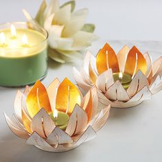 PartyLite Candles, Candle Holders, Home Party, Direct Selling Lotus, Partylite, Shops, Votive Holder, Winter Springs, Candlesticks, Decoration, Lanterns, Oriental