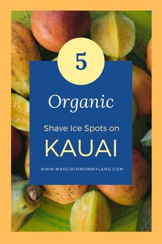 5 organic shave ice spots on Kauai. We loved The Fresh Shave! Hawaii Travel Guide, Travel Tips, Travel With Kids, Family Travel, Oahu Luau, Kauai Hotels, Travelling While Pregnant, California With Kids, Kid Friendly Vacations