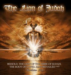 Jesus Christ is the Lion of the tribe of Judah.