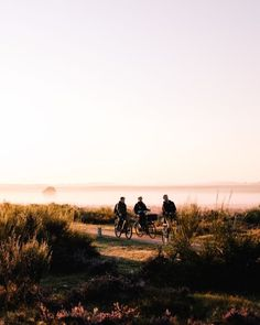 fietsers-op-de-hei