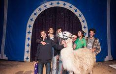 Serge le lama, avec ses ravisseurs, et le patron du cirque, à Bordeaux le 5 novembre 2013