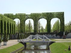 Tight. Trees. Schwetzingen Palace Gardens, Germany.