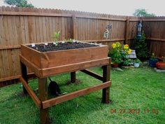 My Sweetie built this raised 4' x 4' mini garden for me for my birthday