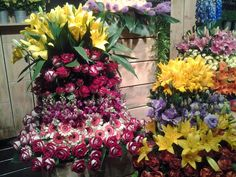 Exposição de Arranjos Florais, Holambra.