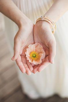 Maxit Flower Design; poppy