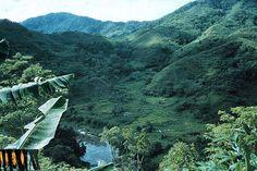 24-Rainforests of the Atsinanana - Madagascar