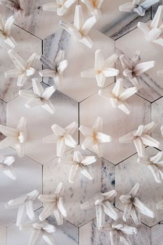 Ai Weiwei - Cao, Marble, 20 x 22 x 25 cm each. Photo by Paris Tavitian © Museum of Cycladic Art. Ai Weiwei, Wall Installation, Modern Artists, Elements Of Art, Something Beautiful, Vintage Home Decor, Textures Patterns, Decorating Your Home, Teak