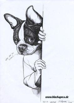 Sketchbook page of a Boston Terrier by Jeroen Teunen, The Dog Painter. For Custom Dog Portraits visit:www. blackspecs.de