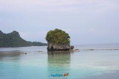 VISIT RAJA AMPAT INDONESIA www.rajaampat.biz #rajaampat #rajaampatbiz #travel #indonesia #tourindonesia #travelindonesia #visitindonesia #indonesiatravel #wonderfulindonesia #vacation #Индонезия #journey #holiday #bali #インドネシア Where To Go, Bali, Places To Visit, Journey, Tours, Explore, Adventure, Vacation, Holiday