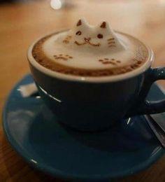 cat cappuccino
