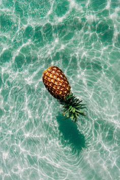 Craving a day at the beach. Hiding under a white tent, eating juicy pineapples and drinking bubbles!  #FNetScentsational