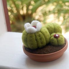 felted baby cactus!