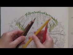 Peta Hewitt - Colouring Tutorial: Colour With Peta.  Duck Pond from Johanna Basford's Enchanted Forest, Part1; time 1:14:36; Feb 20, 2016