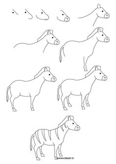 zebra drawing step draw drawings animals zoo simple instructions easy animal thedrawbot zebras dessiner learn horse tutorials guides mammals sketch