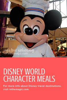 Character meals at Disney World are a lot of fun and a great way to meet characters!