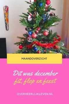 Dit deed, keek en las ik in december. December, Christmas Tree, Holiday Decor, Teal Christmas Tree, Xmas Trees, Christmas Trees, Xmas Tree