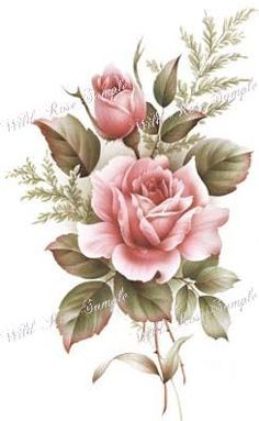 AmeRiCaN BeauTy RoSe ShaBby ChiC DeCALs | Designs by Iris
