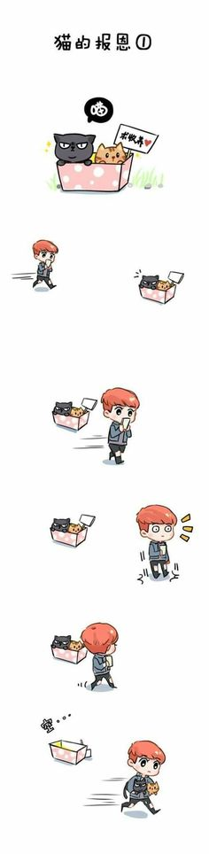 Luhan and Cats part 1