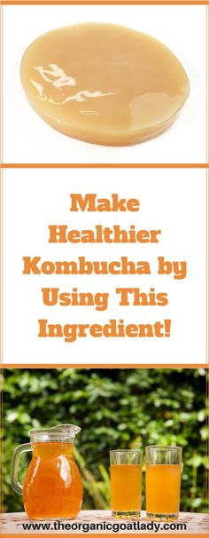Make Healthier Kombucha Using This Ingredient!