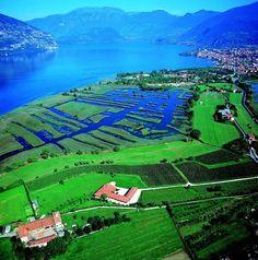 Torbiere del Sebino - Lake Iseo