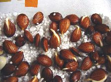 Sprouting peach seeds. The hulls were removed before seed stratification and germination started. The almondlike seeds in pits from peaches, nectarines and apricots do a good job of carrying on the desirable traits of their parents. You can simply sprout