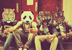 the panda just ruins it.... #tigerhead