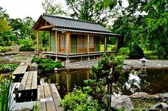 Ботанический сад: часть вторая. Уголок Японии на Петроградке. - Журнал начинающего дауншифтера