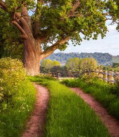 Herefordshire, England - Great for walking and cycling!