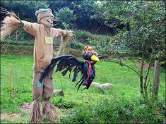 The crow could be on his shoulder or head. It would be good 'cos of the shredded wings. Torteval scarecrows
