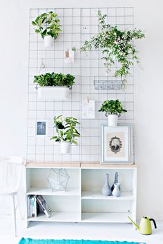 Indoor Garden Ideas - Hang Your Plants From The Ceiling & Walls // This wall planter gives you a place to store your plants as well as other hanging objects, freeing up your floor for more important things, like chairs and tables.