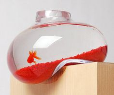 Amazing Fish Bowl Concept; Too Much Money     http://psaltdesign.co.uk/products/bubble-tank/