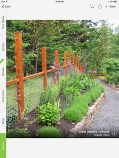 163 best fencing images fence design modern fence on modern fence ideas highlighting your house with most shared privacy fence designs id=96877