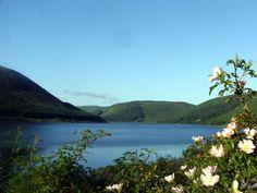 St Mary's Loch - Scottish Borders
