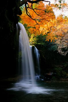 Photograph Autumn Falls by Junya Hasegawa on 500px  <> Thank you for my trip Hotelrade.com