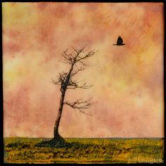 Mixed media photography and encaustic painting of bare tree with crow flying in autumn sunset sky Crow Flying, Mixed Media Photography, Bare Tree, Encaustic Painting, Sunset Sky, Beautiful Artwork, Art Google, Abstract Art, Nature