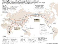NYTmtDNA_Migrations-Map2.jpg 810×618 pixels