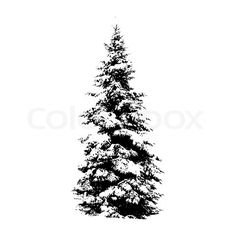Evergreen Tree--Another possible tattoo