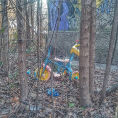 Loosing #childhood in #graffiti forest.