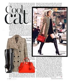 """Cool cat"" by iknewherwhen on Polyvore featuring Carven, Coach, Versace, Bomedo, women's clothing, women's fashion, women, female, woman and misses"