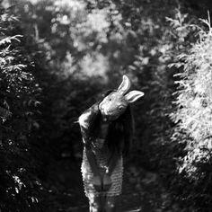 Run run rabbit
