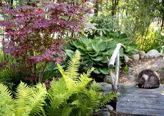 Scandinavian Cottage, Forest Garden, Shade Garden, Home And Garden, Yard, Shades, Plants, Gardening, Garden Ideas