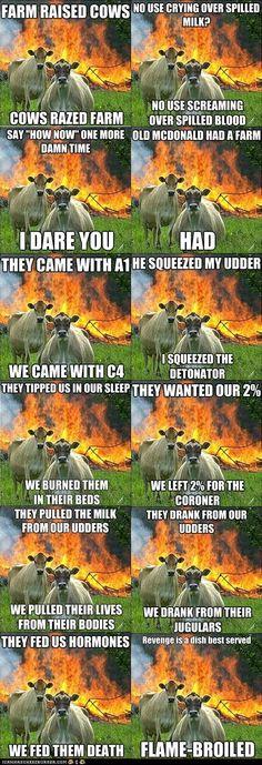 combined evil cow memes